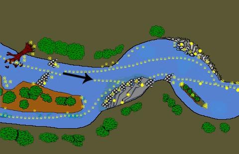 dessins du depot aurifère en rivière