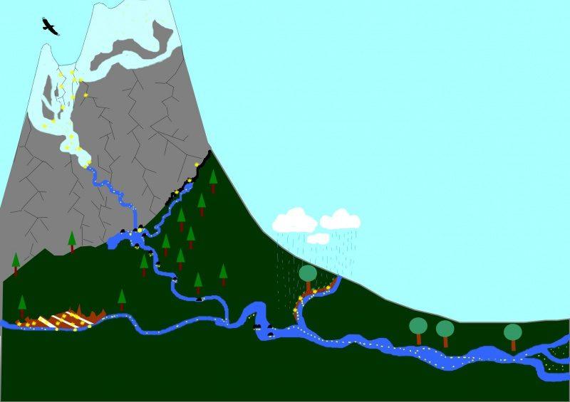 erosion de l'or depuis les veines aurifères jusqu'à la rivière