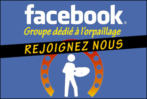 groupe facebook d 'orpaillage en france