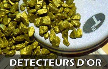 pépites d'or disque de detecteur de metaux